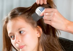Como quitar las liendres pegadas al pelo con el peine