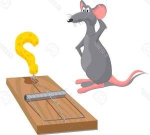 Veneno,-Repelentes,-Trampas-para-Ratas-y-Ratones-(-Caseros-)-1