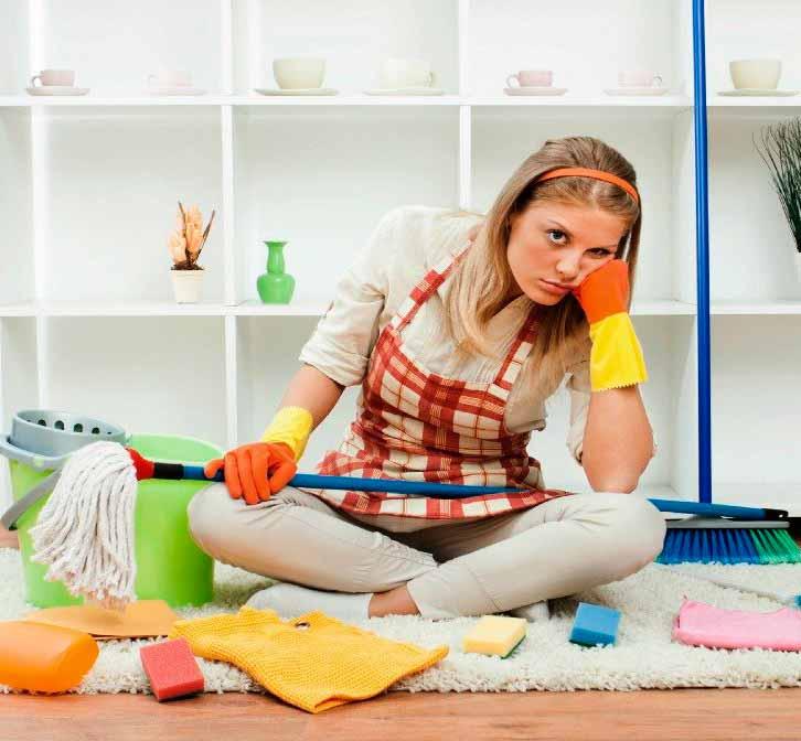 Inspeccione-y-Limpie-Interiores