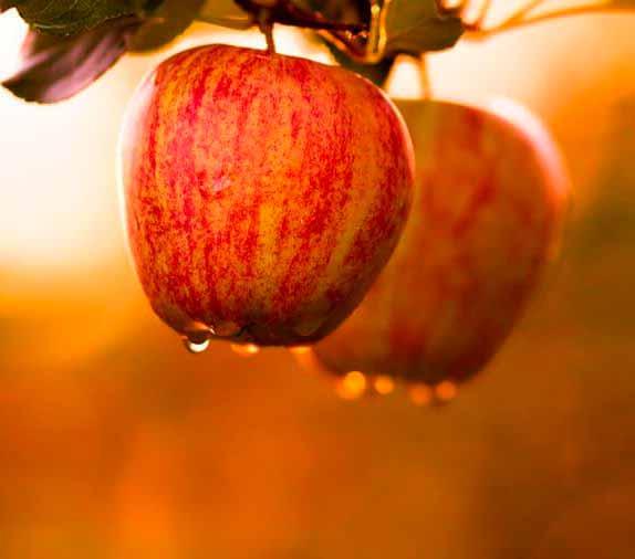 Limpiar-los-productos-que-se-descomponen-manzana