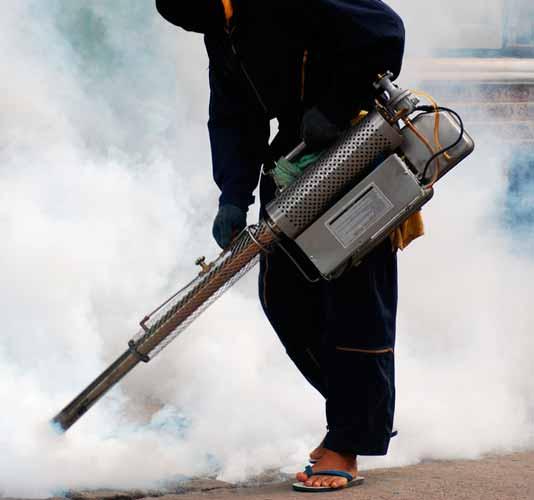 Empresa-de-Fumigación-en-Comas-Perú-1