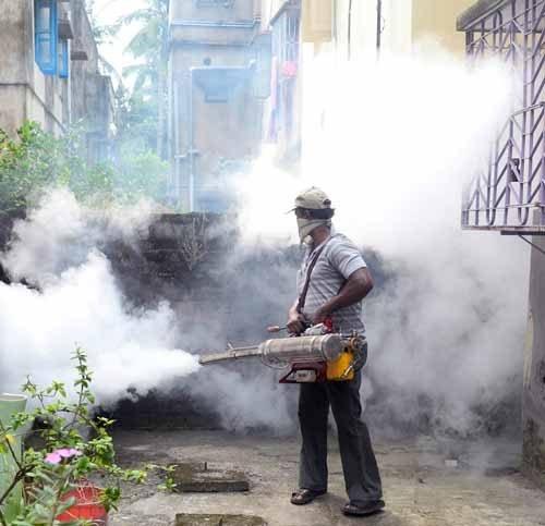 Empresa-de-Fumigación-en-Magdalena-del-Mar-Perú-1