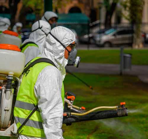 Empresa de Fumigación y Control de Plagas en Miraflores