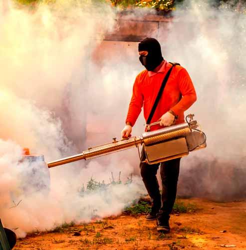 Empresa-de-Fumigación-en-Pachacamac-Perú-1