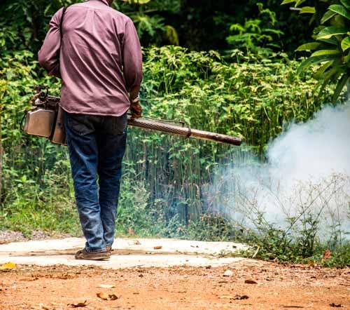Empresa-de-Fumigación-en-Pueblo-Libre-Perú-1