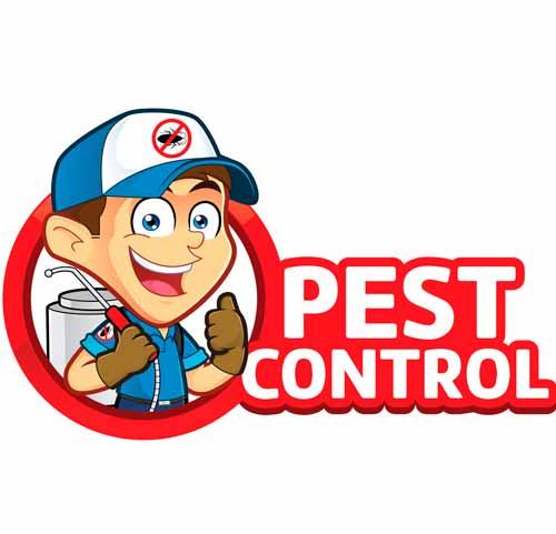 Empresa-de-Fumigación-en-Punta-Hermosa-Perú-1
