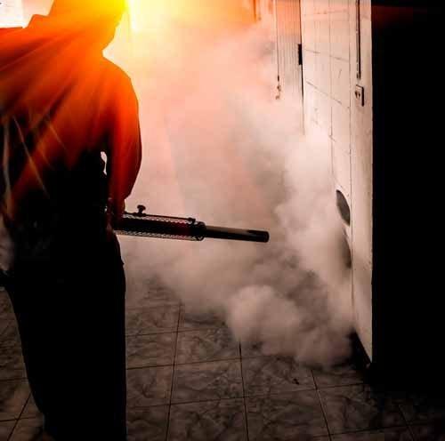 Empresa de Fumigación Y Control de Plagas en San Isidro