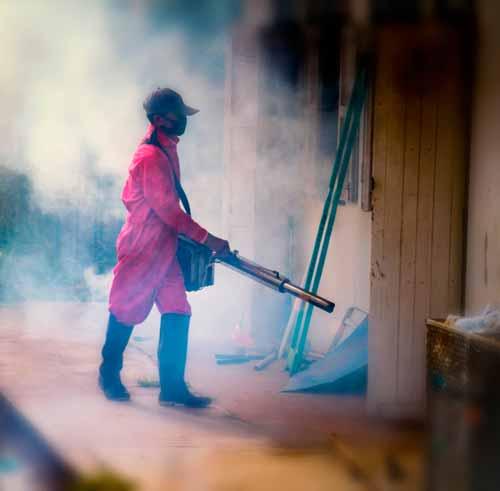 Empresa-de-Fumigación-en-San-juan-de-Miraflores-Perú-1