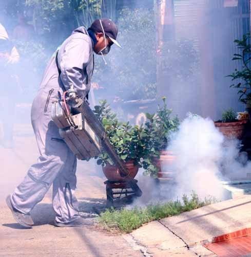 Empresa-de-Fumigación-en-Villa-el-Salvador-Perú-1
