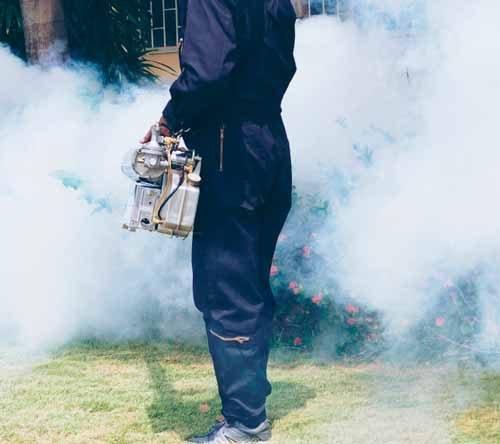 Empresa de Fumigación y Control de plagas en La Molina