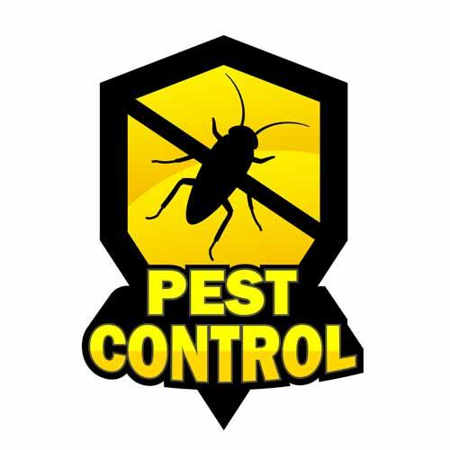 Empresa de Fumigación y Control de Plagas en Los Olivos